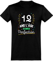 T shirt homme 12 ans la perfection