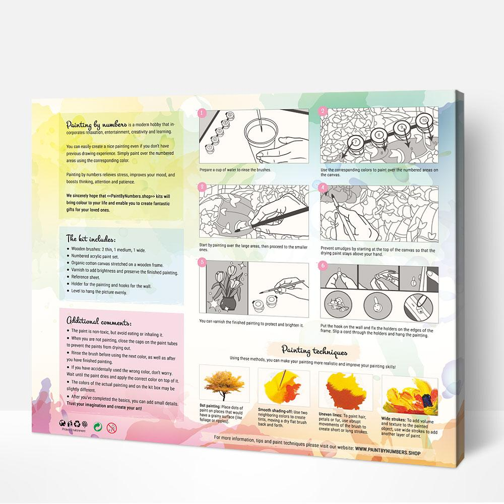 diy painting by numbers kit