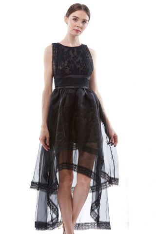 BACKORDER: Embroidered dress with sheer organza layered skirt