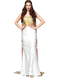 Fish Cut Long Dress With A Back Trail By Anvita Thakkar