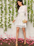 White Nylon Long Sleeve Zip Back Ruffle Trim Belted Lace Dress