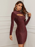 Stand Collar Cutout Front Glitter Slim Fit Dress