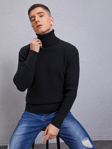 Black Solid Turtleneck High Stretch Sweater