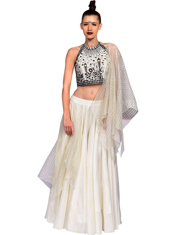 Embroidered Crop Top With Lehnga Skirt by Amit Gupta