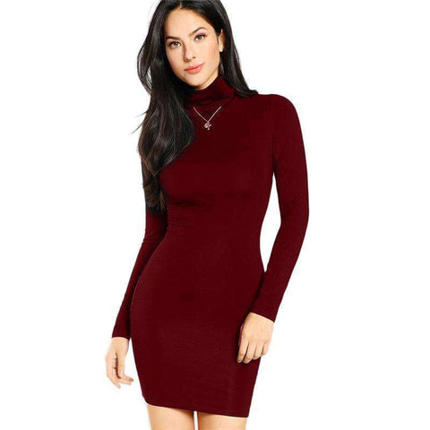 Burgundy Turtleneck Long Sleeve Mini Dress
