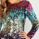 Multicolour Sequins Iridescent Skinny Round Neck Long Sleeve Dress