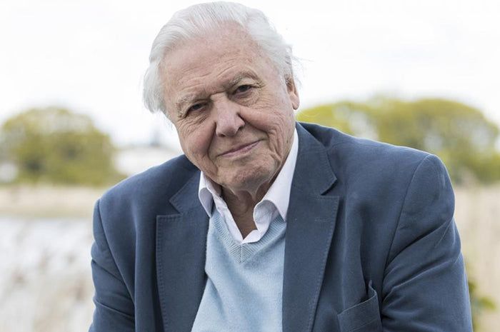 Sir David Attenborough - WLT