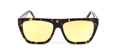 Maui Col1 polarized