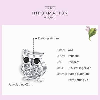 Lovely Owl Animal charm, 925 Silver, with CZ