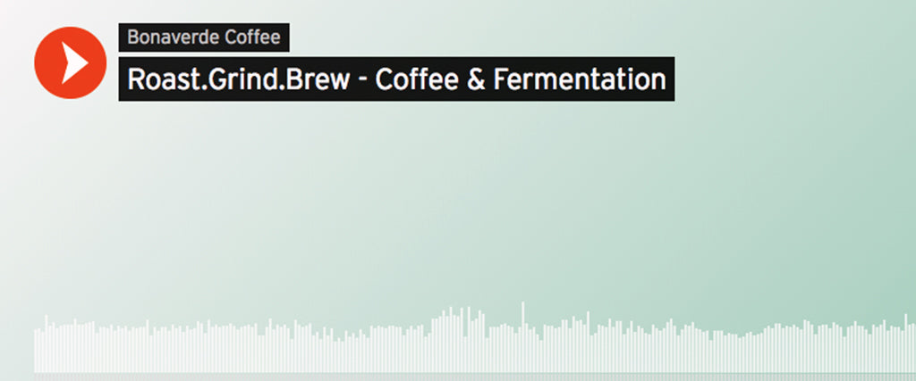 RGB Podcast | Coffee & Fermentation