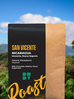 San Vicente 250g [Light Roast]