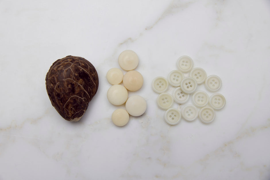 buttons made from corozo nuts