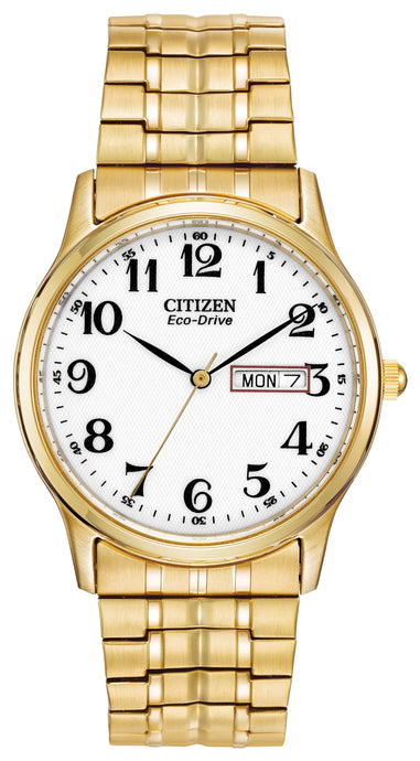 Citizen Gold Ecodrive Expandable Watch