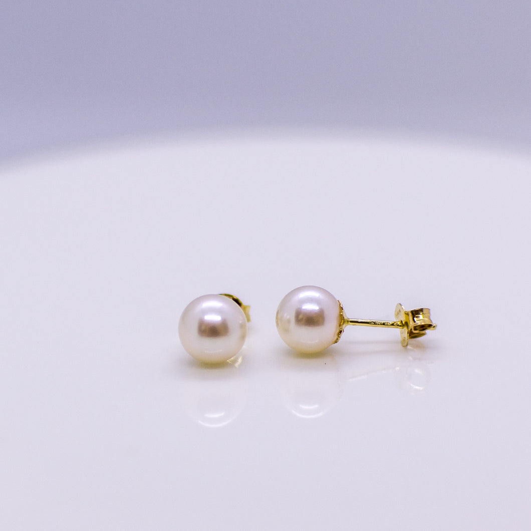 18ct Gold 6mm Akoya Pearl Earrings