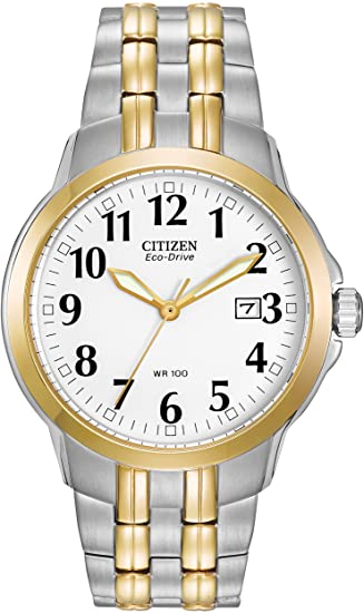 Citizen Two-Tone Ecodrive Watch