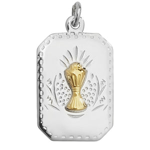 Kids Silver Rectangular Communion Medal & Chain