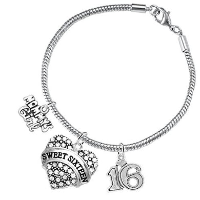 The Perfect Gift Sweet Sixteen Hypoallergenic