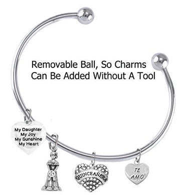 The Perfect Gift Quinceanera Hypoallergenic Adjustable Removable Ball Ends, Bracelet - Safe