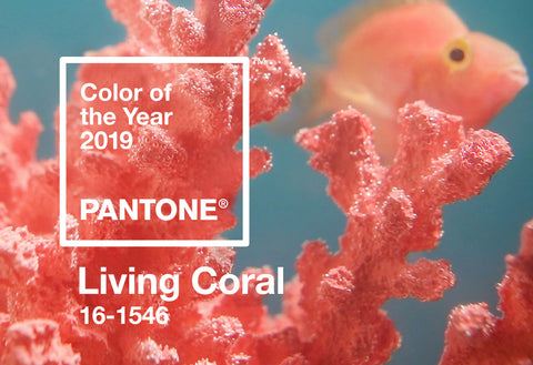 Coral pantone colour of the year 2019
