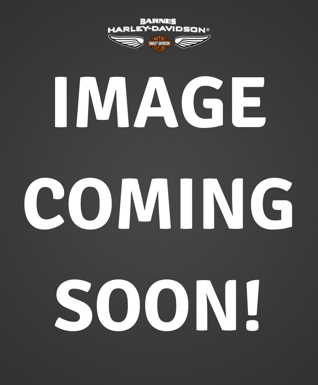 JAKE REPLACEMENT LENSES - SMOKE GREY