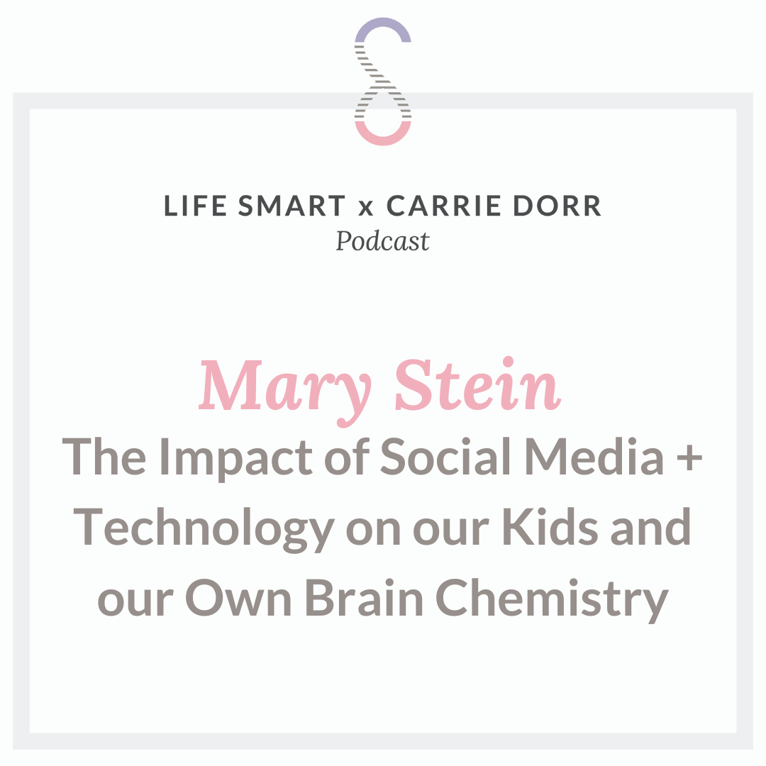Mary Stein: The Impact of Social Media + Technology on our Kids and our Own Brain Chemistry