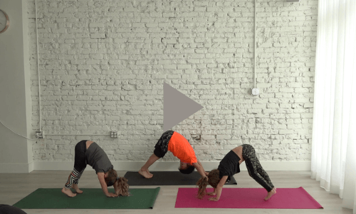 Move + Mind Stretching Exercises