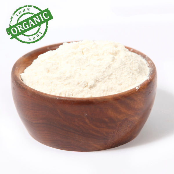 Aloe Vera Powder Organic 200:1 Concentration