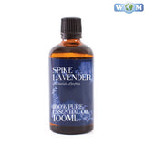 Spike Lavender Essential Oil
