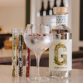 Bolney Perfect Serve Gin Kit