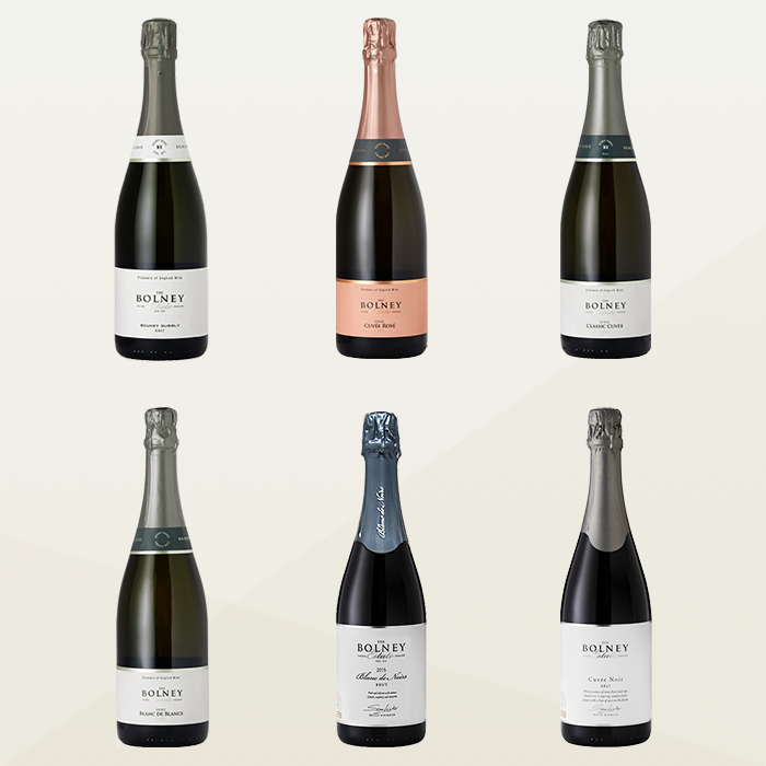 Sparkling Wine Case