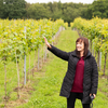 Wine Tasting and Tour with Luxury Cream Tea Voucher