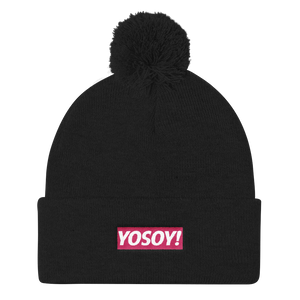 BOX LOGO KNIT CAP