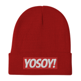 YOSOY OG BOX LOGO BEANIE (LOVER'S EDITION)