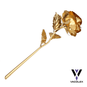Vacolex™ 24 Karat Gold Rose