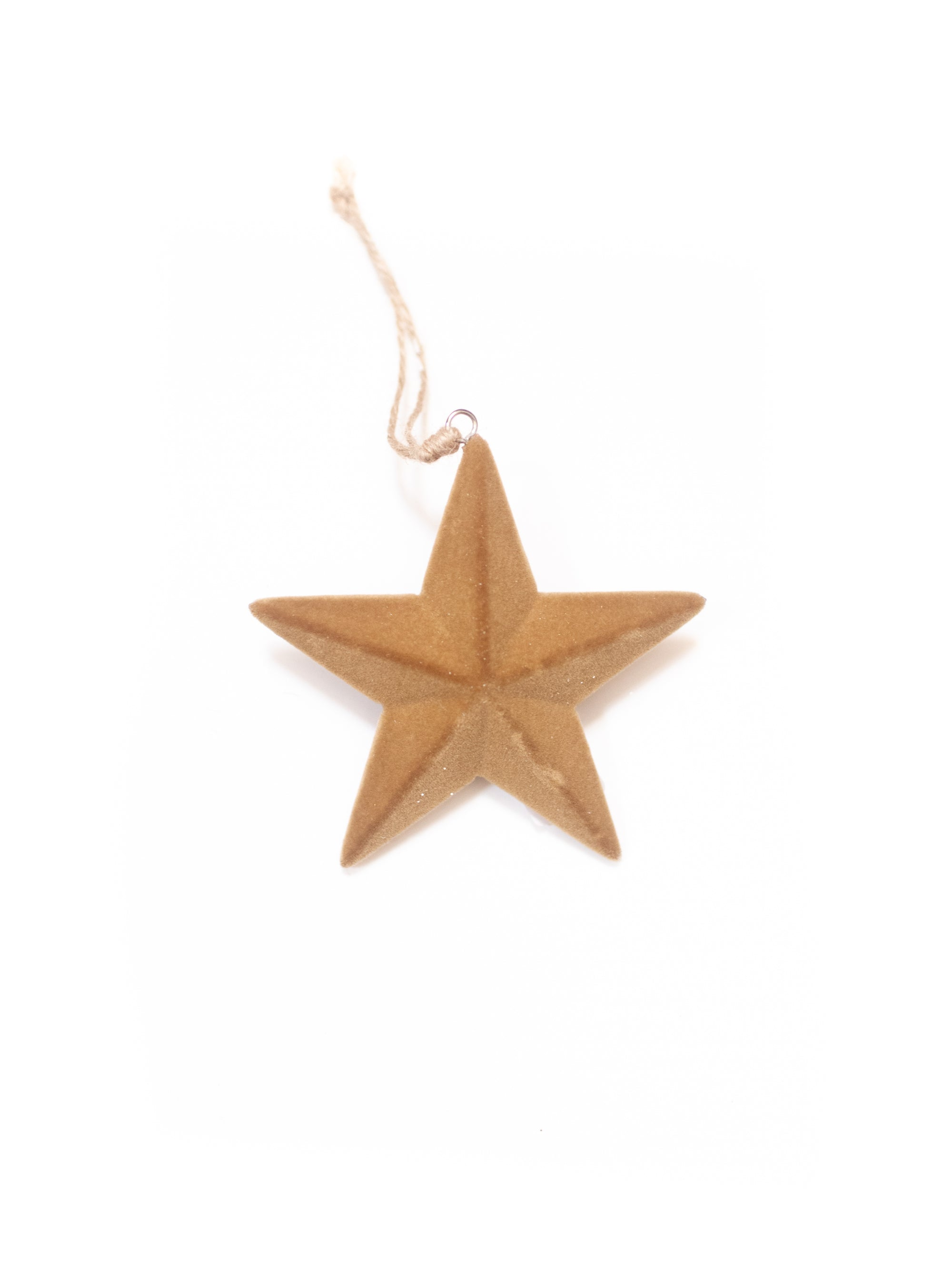 Flocked Wood Star Ornament