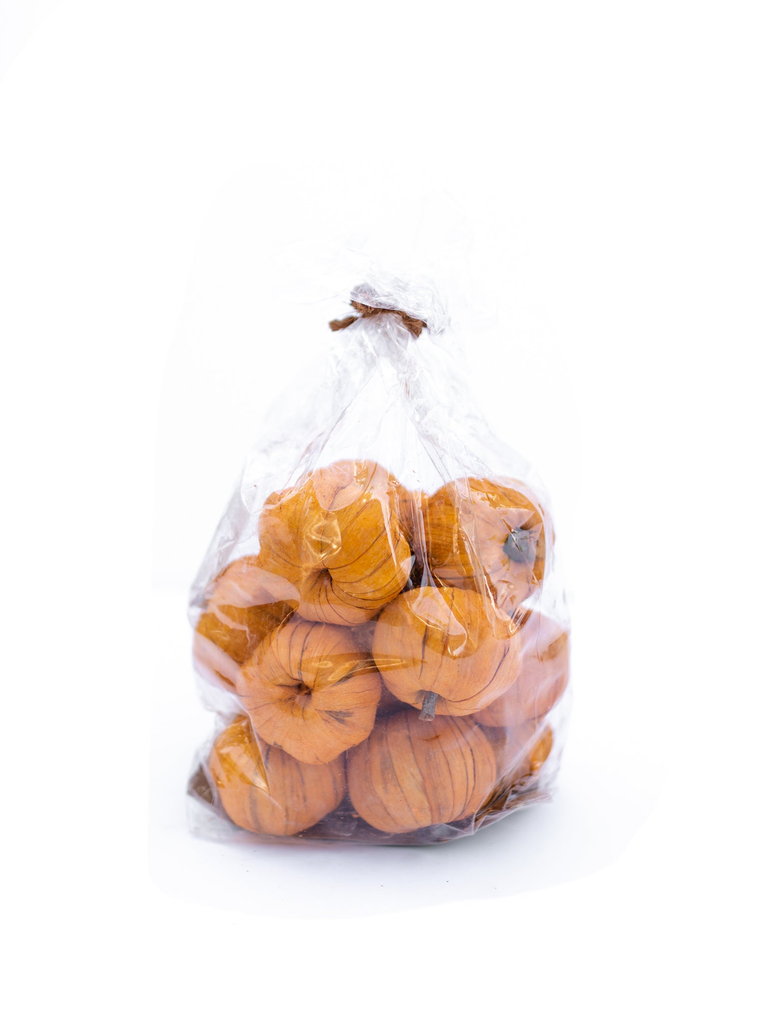 Bag of Miniature Dried Pumpkins