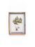 Wood Framed Botanical Print