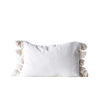 Cotton Woven Pillow w/ Tassels