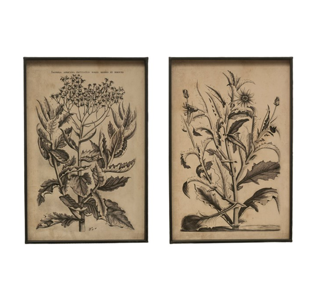 Metal Framed Floral Print