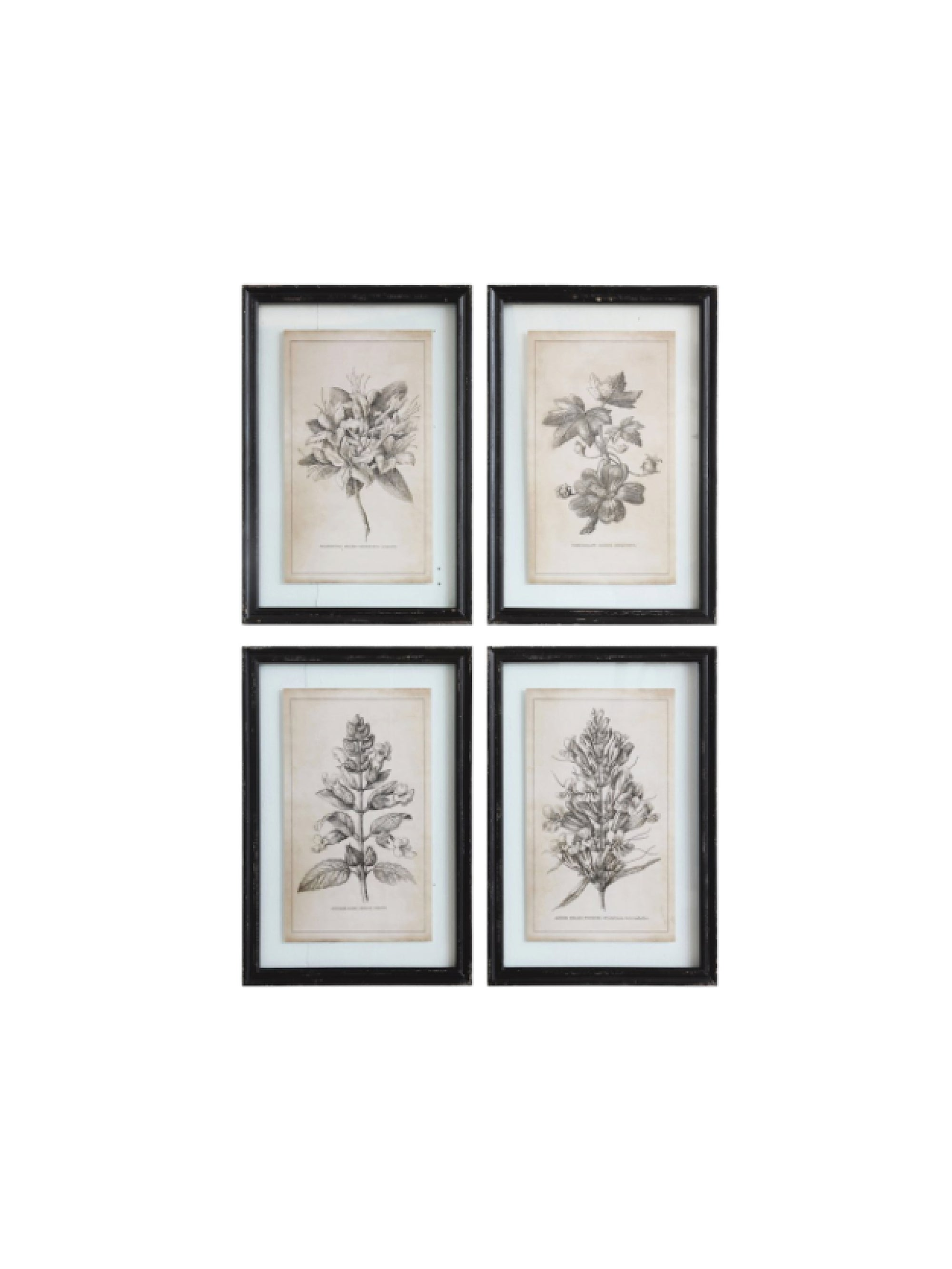 Floral Image in Wood Frame