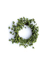 Green with Envy Wreath