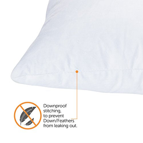 ComfyDown 20x20 Square Pillow Insert