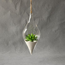 Moondrop Hanging Terrarium (Set of 2) from ObJae