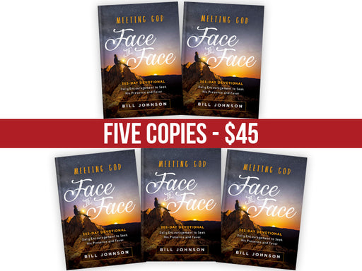 Meeting God Face to Face : FIVE Book Bundle