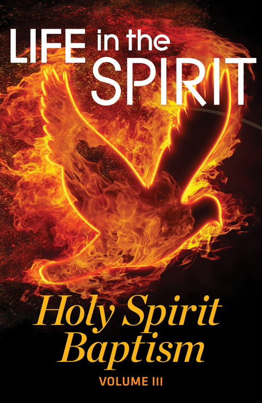 LIFE IN THE SPIRIT : Holy Spirit Series, VOL.3 - Holy Spirit Baptism