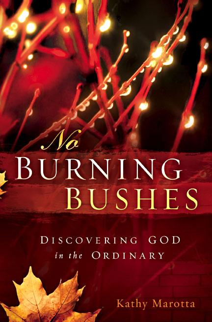 No Burning Bushes : Discovering God in the Ordinary