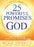 25 Powerful Promises From God : Proclamations for Supernatural Transformation