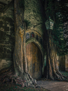 Tolkienian Doorway Fine Art Print