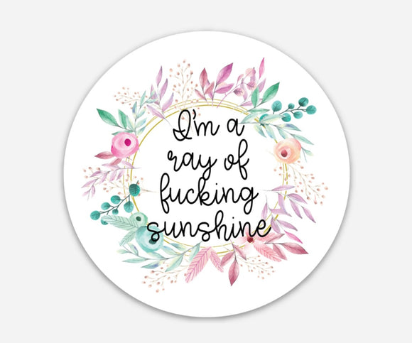 I'm a Ray of Fucking Sunshine - Sweary 3 Inch Circle Stickers