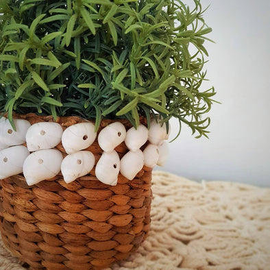 Small Banana Leaf Pot With Shells